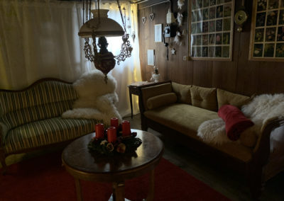 Sheep skin in living room